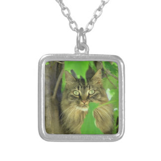 Maine Coon Cat in Tree Silver Plated Necklace