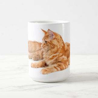 Maine Coon cat Coffee Mugs
