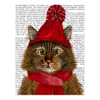 Maine Coon Cat Postcard