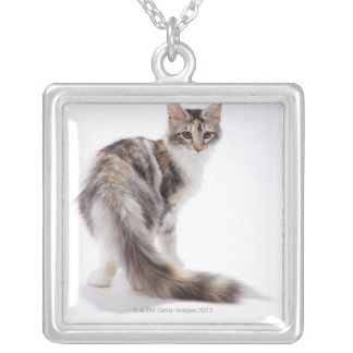 Maine Coon cat Silver Plated Necklace