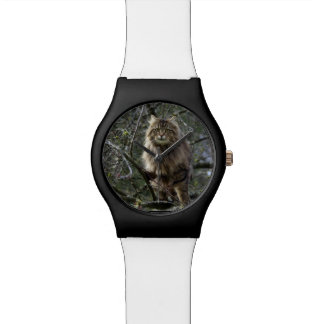 Maine Coon Cat Tabby Animal-lover Watch