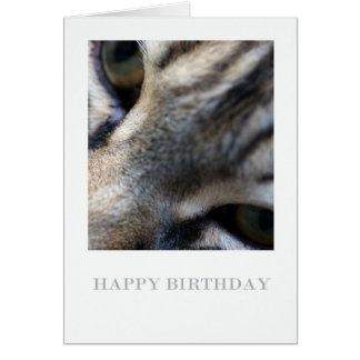 Maine Coon Close Up, Photography Birthday Card