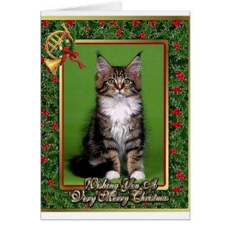 Maine Coon Kitten Blank Christmas Card