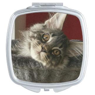 Maine Coon Kitten Compact Mirror