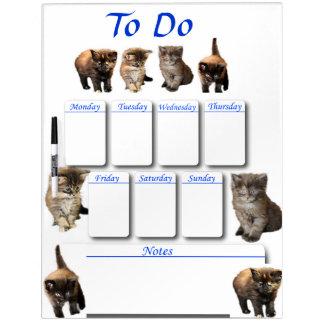 Maine Coon Kitten Dry Erase Board