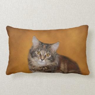 Maine Coon kitten face Lumbar Pillow