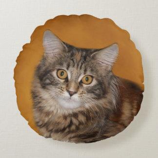 Maine Coon kitten face Round Cushion