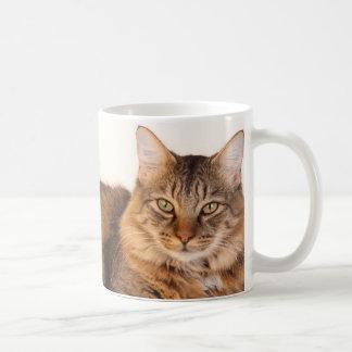 Maine Coon Kitty Coffee Mug