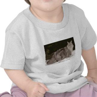 maine coon shirts