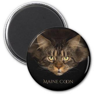 Maine Coone Cat Magnet
