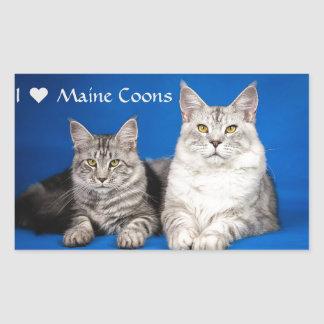 Maine Coons Cats Rectangular Sticker