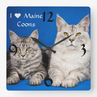 Maine Coons Cats Square Wall Clock