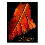 Maine Fall Photo Foliage | Maine Autumn Foliage Postcard