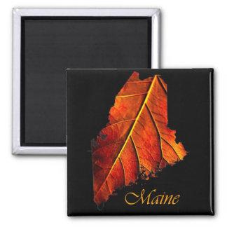 Maine Gift Magnet Souvenir
