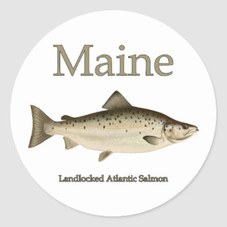 Maine Landlocked Salmon Classic Round Sticker