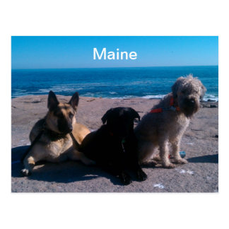 Maine Vacation Postcard