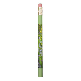 Maine Wildflowers Pencil