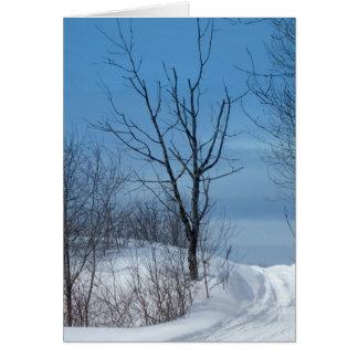 Maine Winter Card