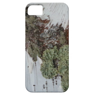 Mainely Birch iPhone 5 Cover