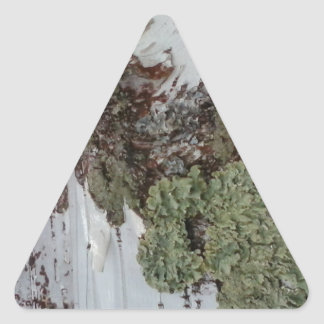 Mainely Birch Triangle Sticker