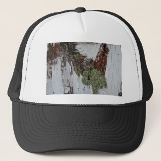 Mainely Birch Trucker Hat