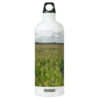 Maize maze SIGG traveller 1.0L water bottle