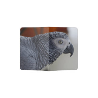 Majestic African Grey Parrot