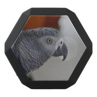 Majestic African Grey Parrot Black Boombot Rex Bluetooth Speaker