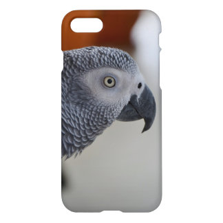 Majestic African Grey Parrot iPhone 7 Case