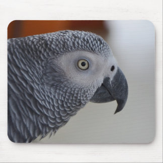 Majestic African Grey Parrot Mouse Pad