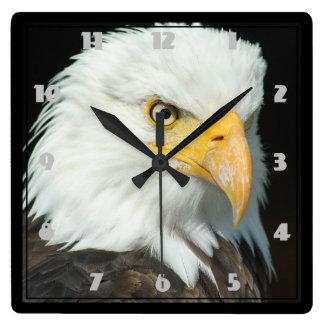 Majestic Bald Eagle Portrait Square Wall Clock