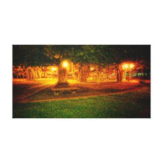 Majestic Banyan Tree Stretched Canvas Prints