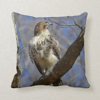 Majestic Hawk Cushion