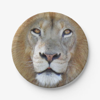 Majestic Lion Close Up Paper Plate