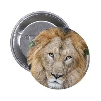 Majestic Lion King 6 Cm Round Badge