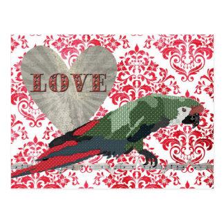 Majestic Macaw Love Damask  Postcard