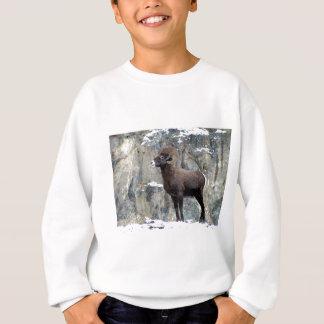 Majestic Mountain Bighorn Sweatshirt