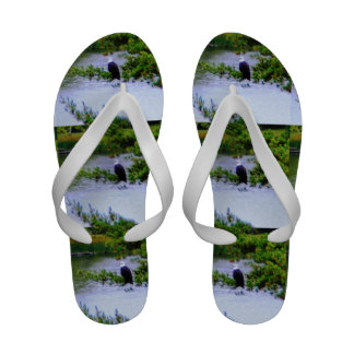 Majestic Neighbor Flip Flops