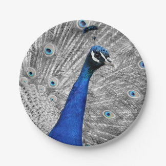 Majestic Peacock 7 Inch Paper Plate