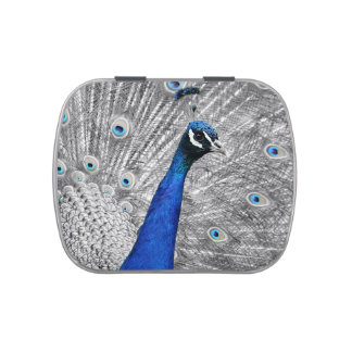 Majestic Peacock Candy Tins