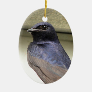 Majestic Purple Martin Ceramic Ornament
