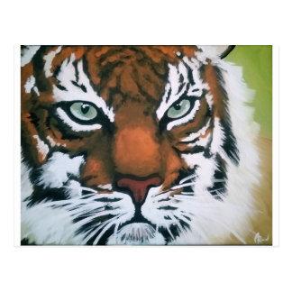 Majestic Tiger Postcard