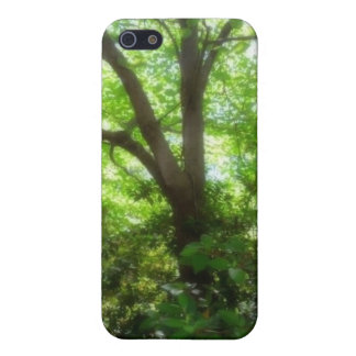 Majestic Trees iPhone 5 Covers