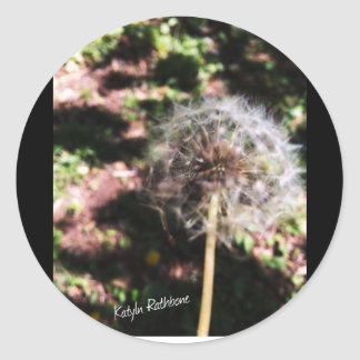 Make A Wish Classic Round Sticker