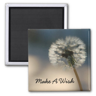 Make A Wish Magnet