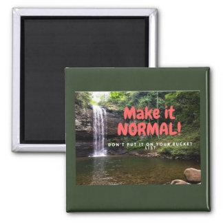 Make it Normal! Magnet
