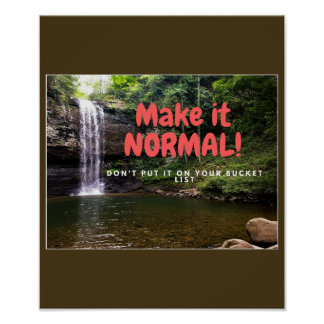 Make it Normal! Poster
