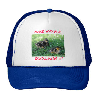 Make Way For Ducklings!!! Hat