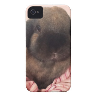 Make your day special with a little fur face! iPhone 4 cases