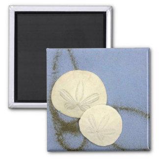 Make Your Own Magnet - Sand Dollars
